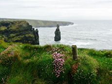 Bromore Cliffs  Ballybunion